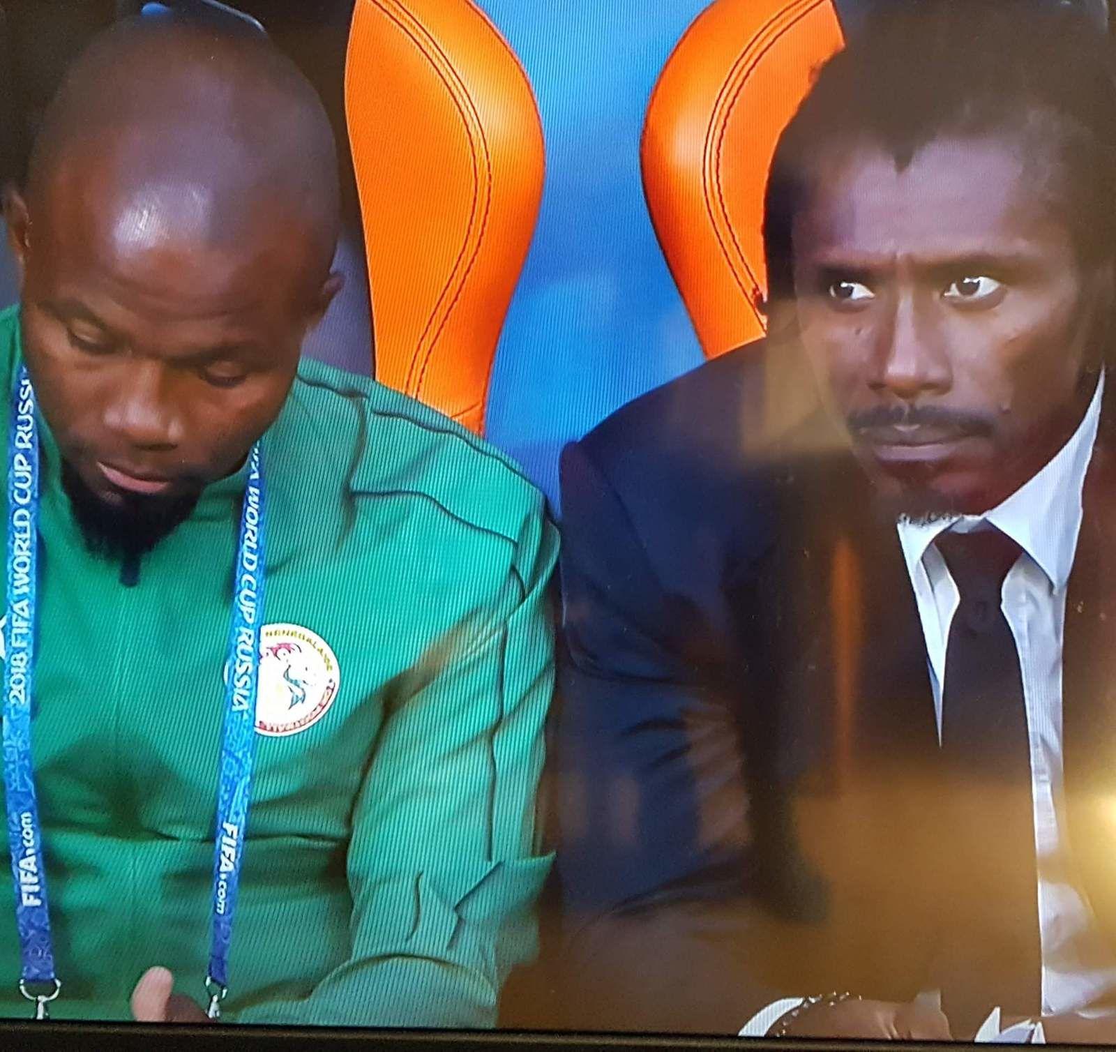 """""""MERCI aux Lions du Sénégal en dépit de l'élimination en coupe du monde"""" par M. Amadou Bal BA baamadou.overblog.fr"""