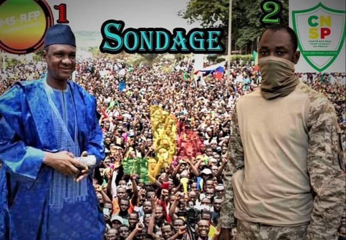 «Mali: Vers quelle transition? dans quels délais? Et quelle sera la place du Mouvement M 5?»par Amadou Bal BA - http://baamadou.over-blog.fr/