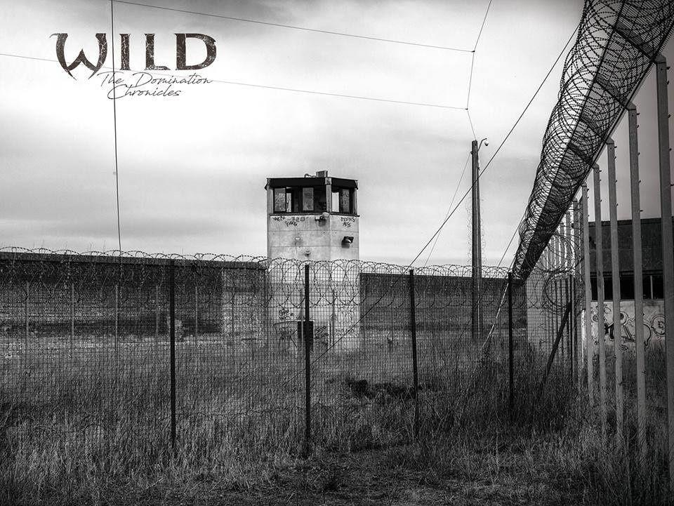 Chronique du nouvel album de W.I.L.D : The Domination Chronicles