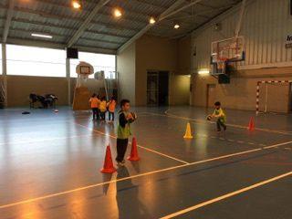 ME Crins: Club basket