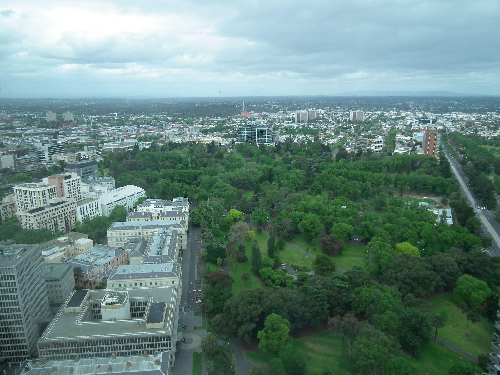 Heatcote, blue wren, fed square, view of Melbourne