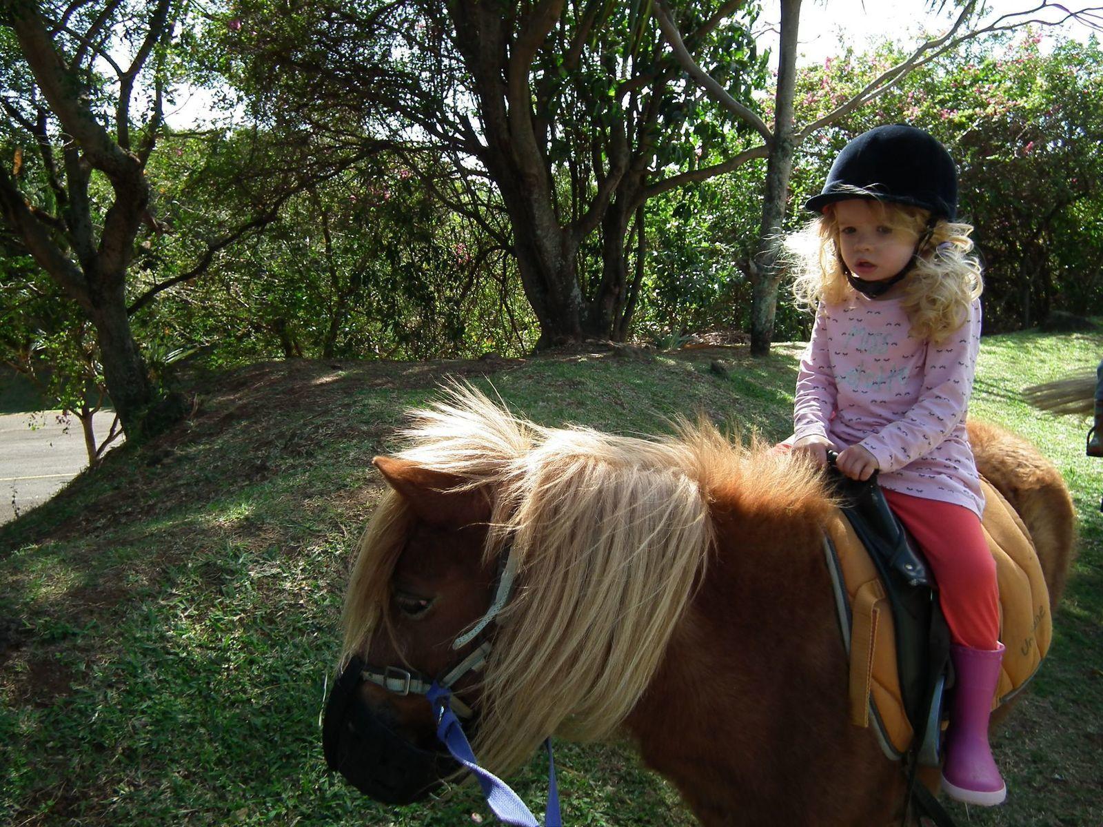 Madonie au poney
