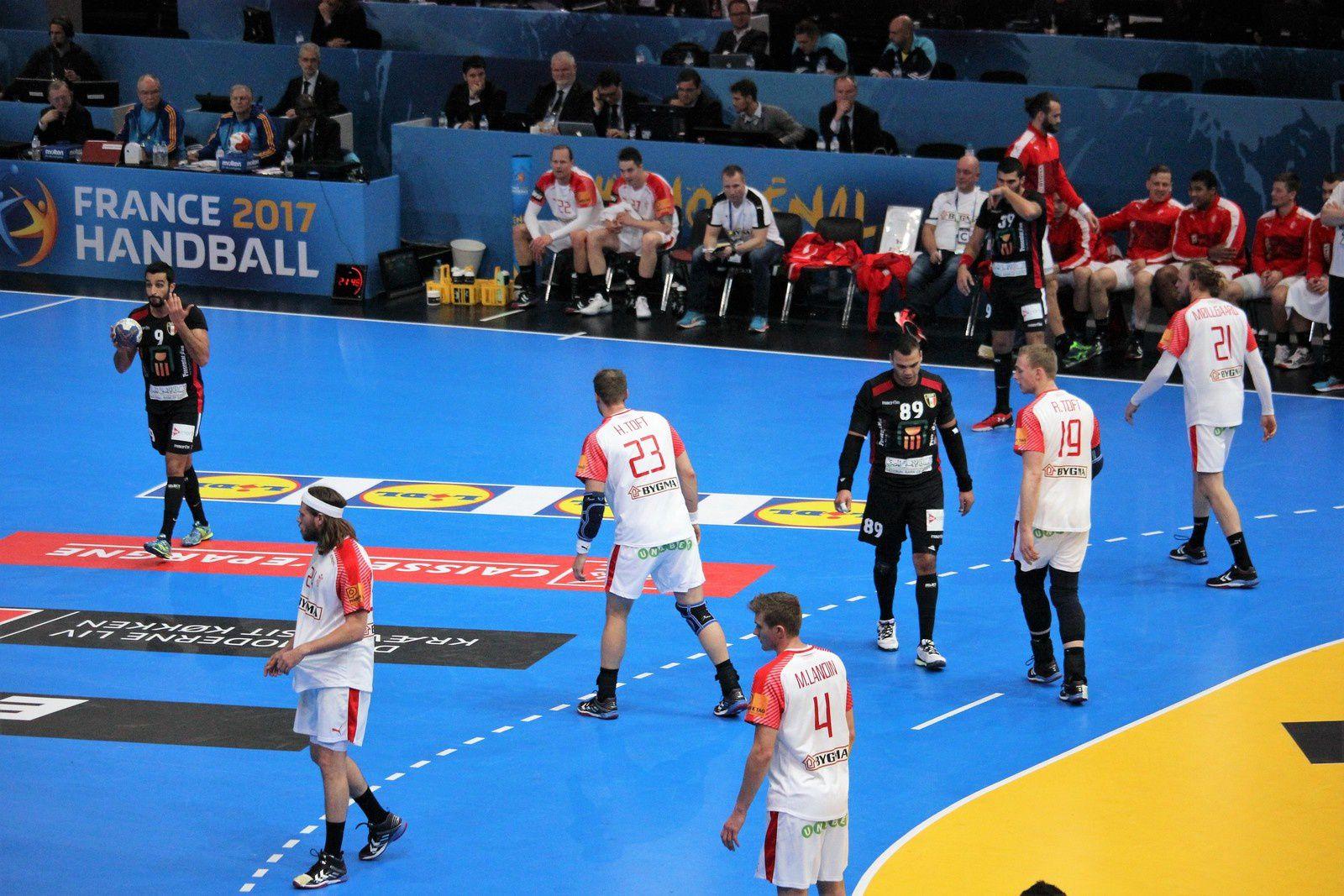 Egypte vs Danemark (Championnat du Monde 2017) 14.01.2017 (2/2)