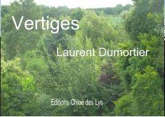 Dans Le Bibliothécaire : VERTIGES de  Laurent DUMORTIER