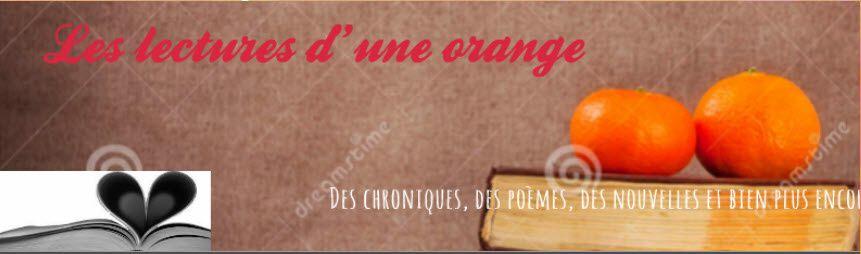 http://leslecturesduneorange.blogspot.be