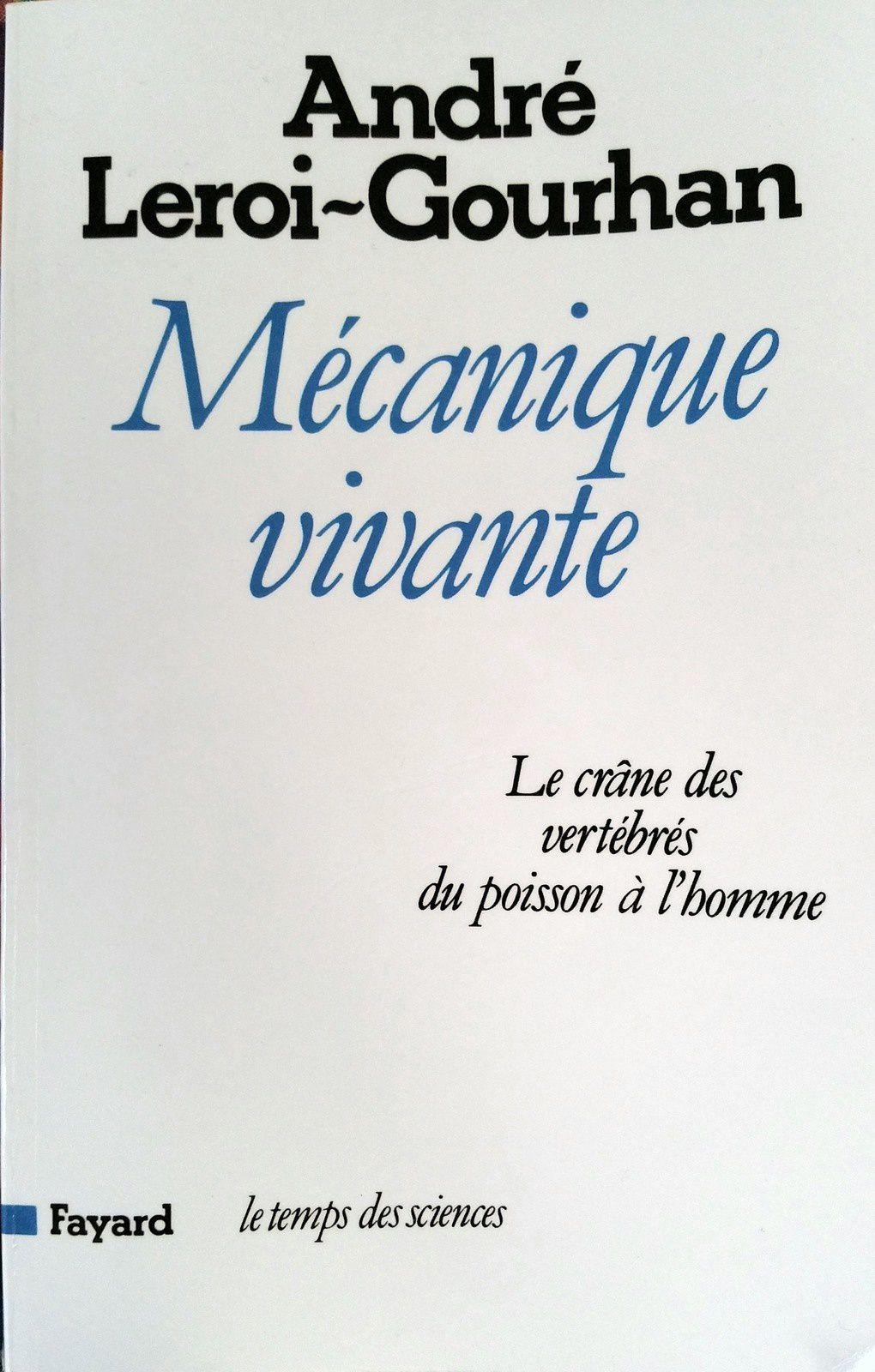 Mécanique vivante, le crâne des vertébrés du poisson à l'homme - André Leroi-Gourhan, 1983