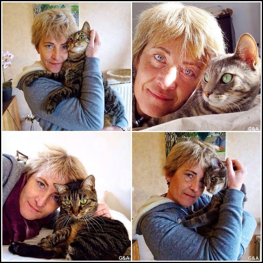 Mes chats-chats et leur Môman !
