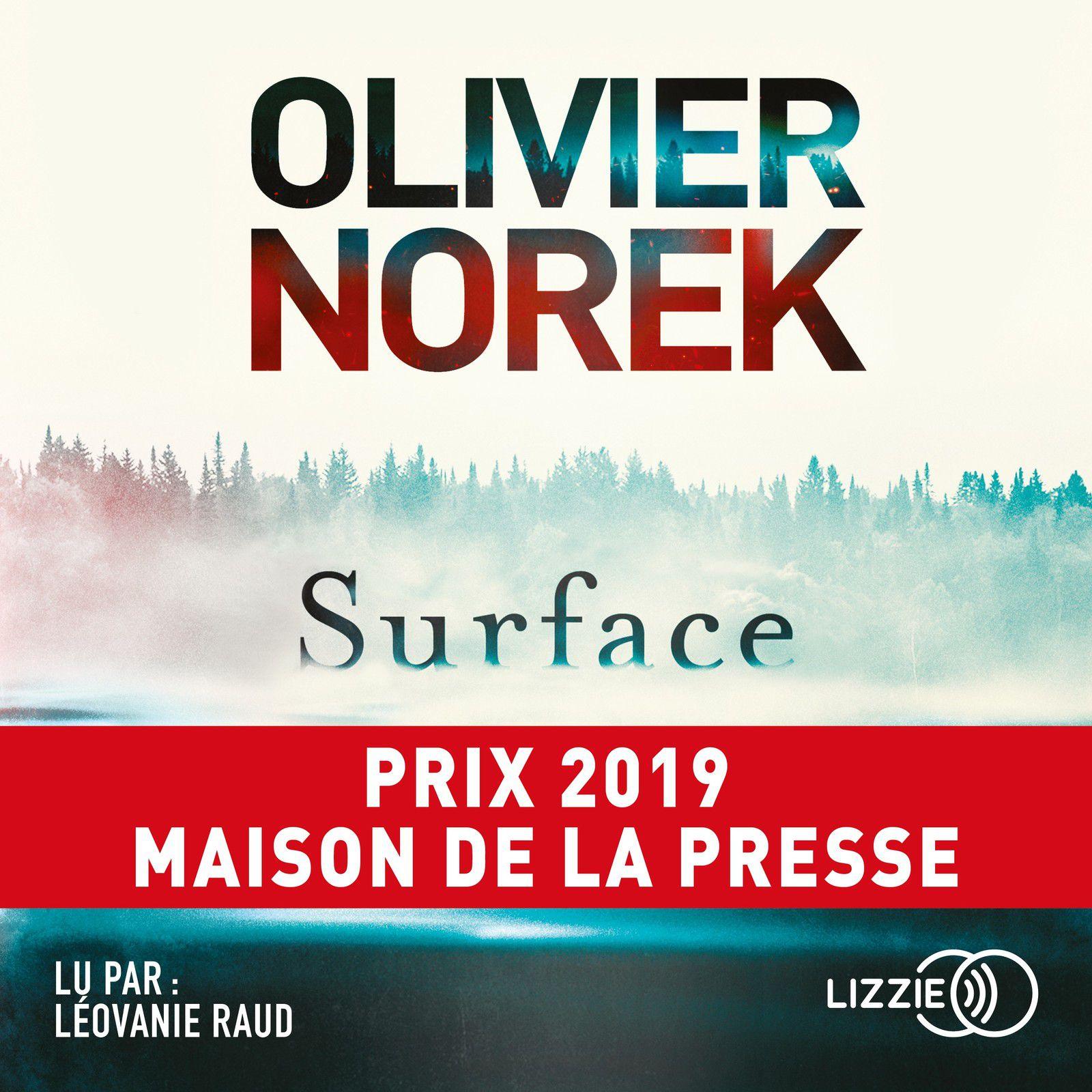 thriller, polar, olivier Norek, bestseller, surface, blog, avis, chronique, livre audio