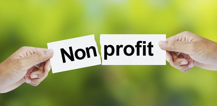 La Nature ne veut d'aucun profit mais d'intelligence (le contraire du profit ?).
