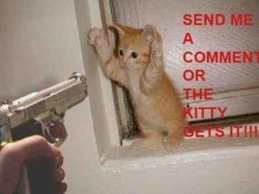 Envoie- moi un commentaire ou le chaton va y passer !