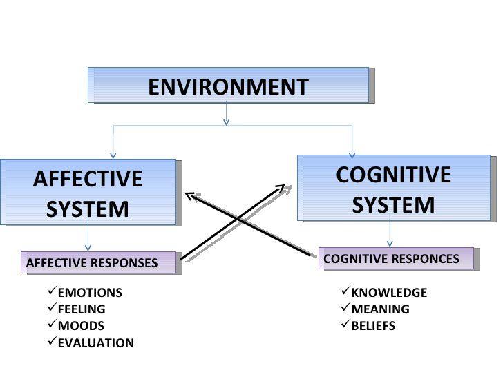 Les cognitions : les facultés sont facultatives ?
