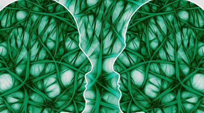 le cerveau assiégé - inversion de la courbe du Q.I.