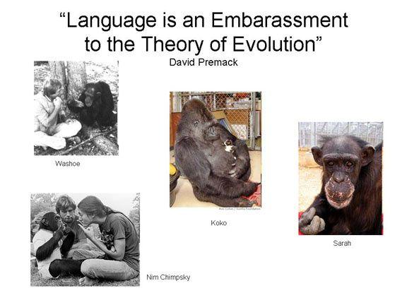 le langage est très embarrassant pour la théorie de l'évolution