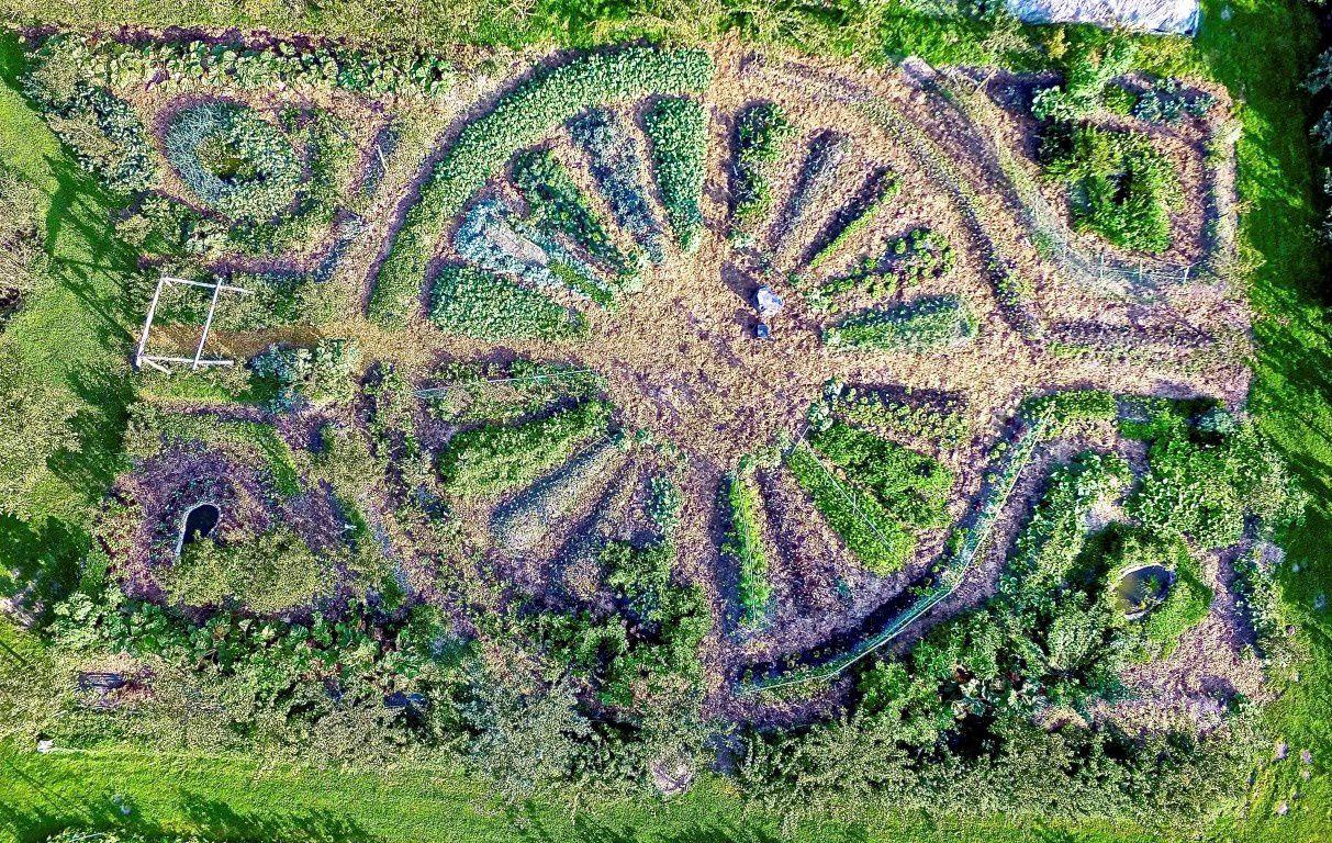 Jardins mandalas et permaculture ?