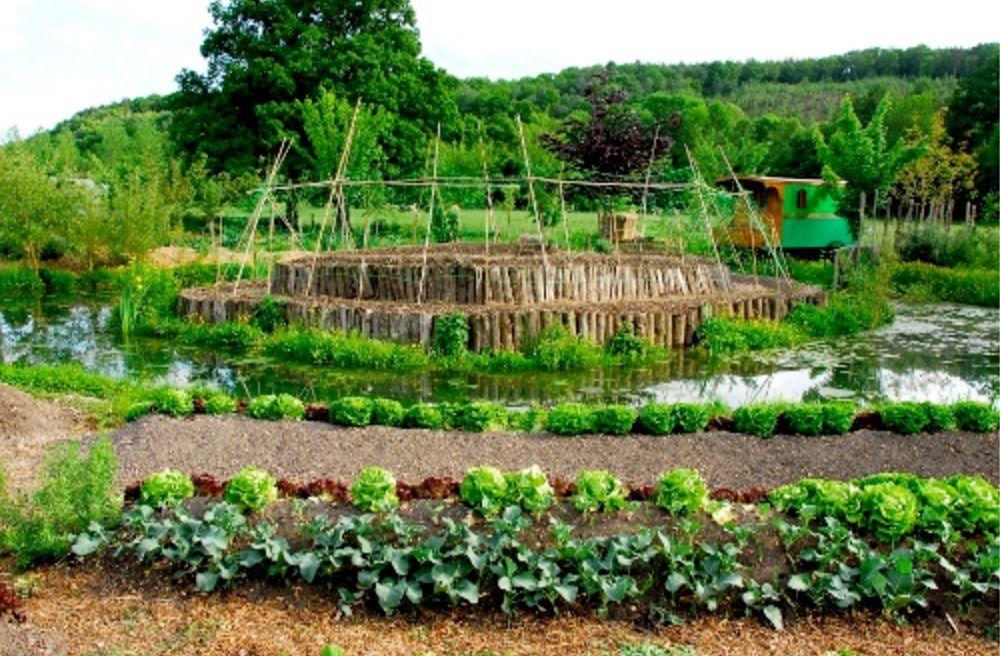 après la grande permaculture collective la permaculture individuelle