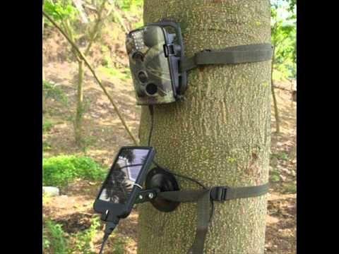 Caméra détecteur de mouvement : le piège photographique!