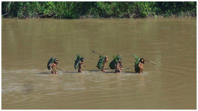 Pérou, des tribus non contactées protégées ?