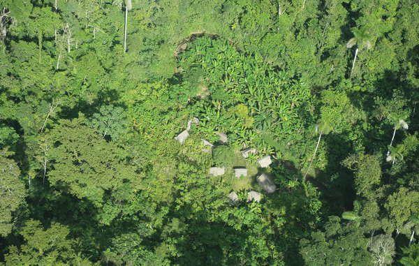 Habitations communautaires d'une communauté autochtone non contactée près de la nouvelle réserve de Yavari Tapiche