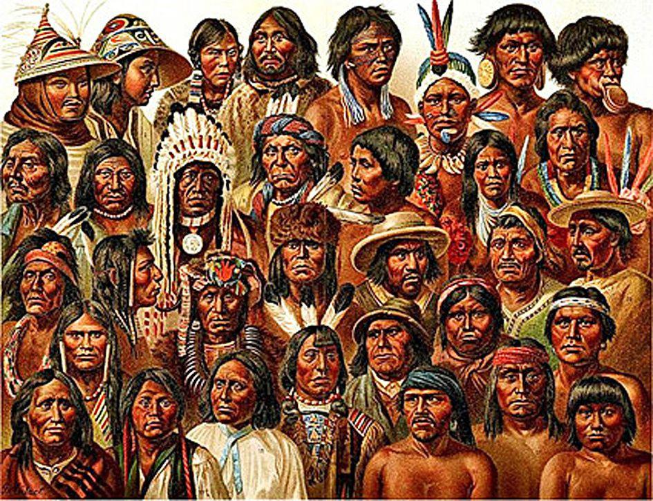 La diversité qui a suivi, génération après génération, la souche première
