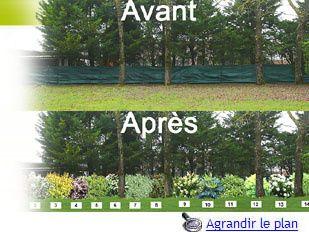 nous pouvons vraiment changer de mentalités...un jardin afin de permettre à la nature d'exister !