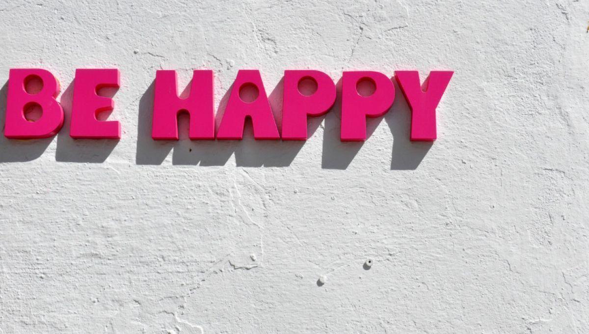si t'es pas heureux je te pète la gueule ou la tyrannie du bonheur ? Lorsque les escrocs au pouvoir ont « besoin de faire croire » les gens heureux…afin de mieux les dévaliser. Résultats ? Soyons à fond heureux/ ses mais sans eux et gratuitement !