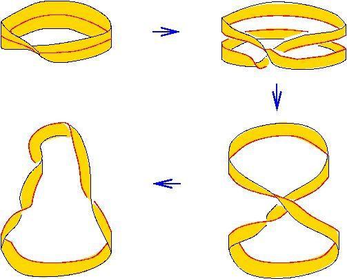 une des transformations topologiques (domaine trop vaste pour l'illustrer ici)