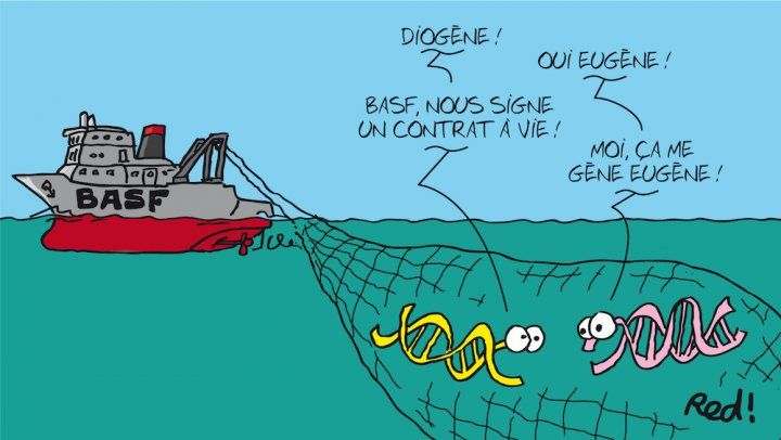 La biodiversité marine fait l'objet d'un nombre croissant de dépôts de brevets. Une équipe de chercheurs s'est penchée sur ce phénomène, et a constaté que la moitié des séquences génétiques brevetées l'était par le géant allemand de la chimie BASF. Ils suggèrent des pistes de régulation pour améliorer le partage des richesses océaniques.