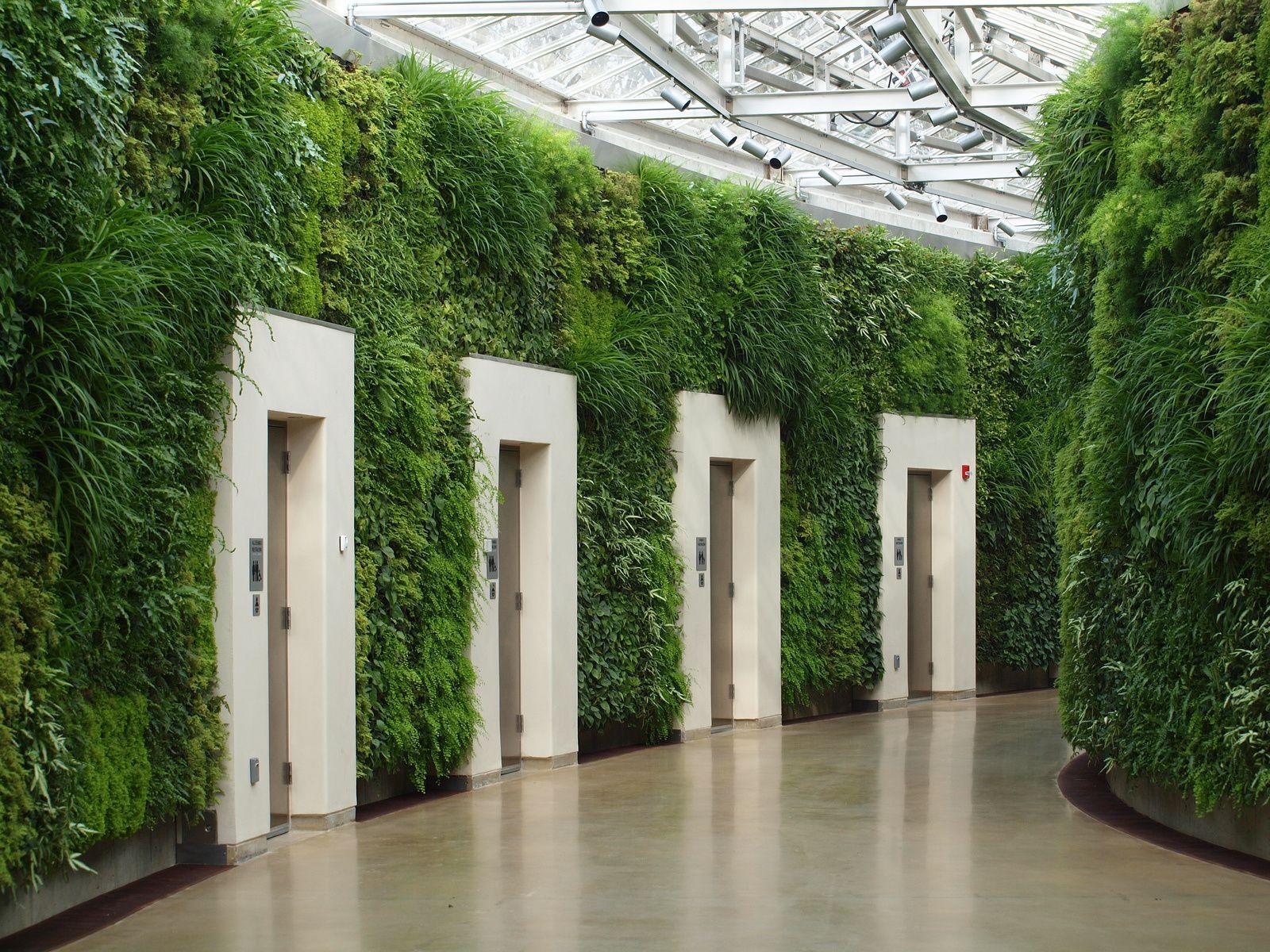 appartements herbacés