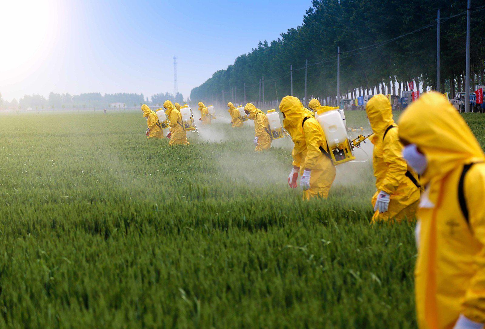Interdiction d'interdire les pestes des pesticides ? Tout le monde doit subir sans réagir et les politiciens auraient bloqué toutes possiblités de se défendre directement des…nuisances. Nuisances qui n'ont aucun mais aucun argment pour se poursuivre une seconde de plus…