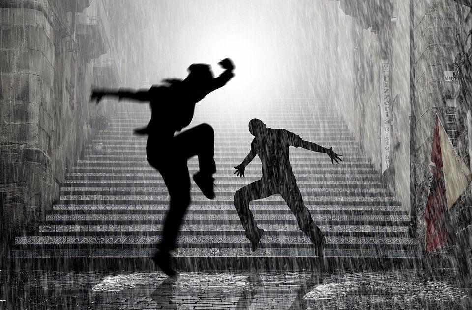 de Pixabay… « Mais ce qu'il faut savoir est que cette odeur que nous ressentons n'est pas celle de la pluie mais plutôt celle d'une association de composés chimiques libérés lorsque la pluie tombe sur la terre, connue sous le nom de «petrichor».