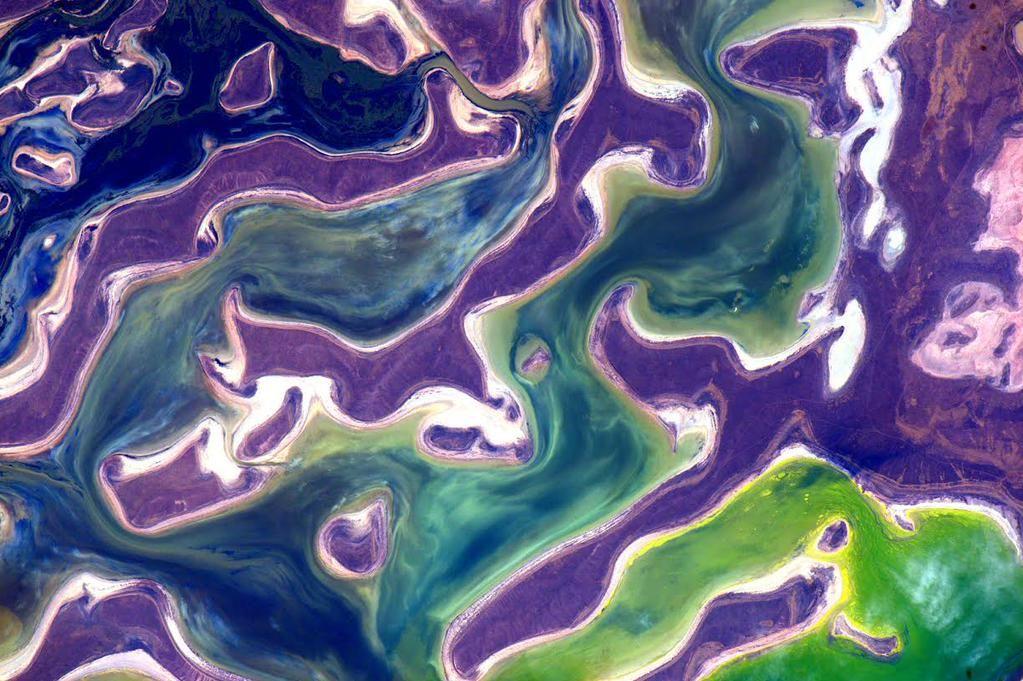 Photo. NASA/Scott Kelly….image du lac Tengiz au Kazakhstan…qui est donc le peintre ?