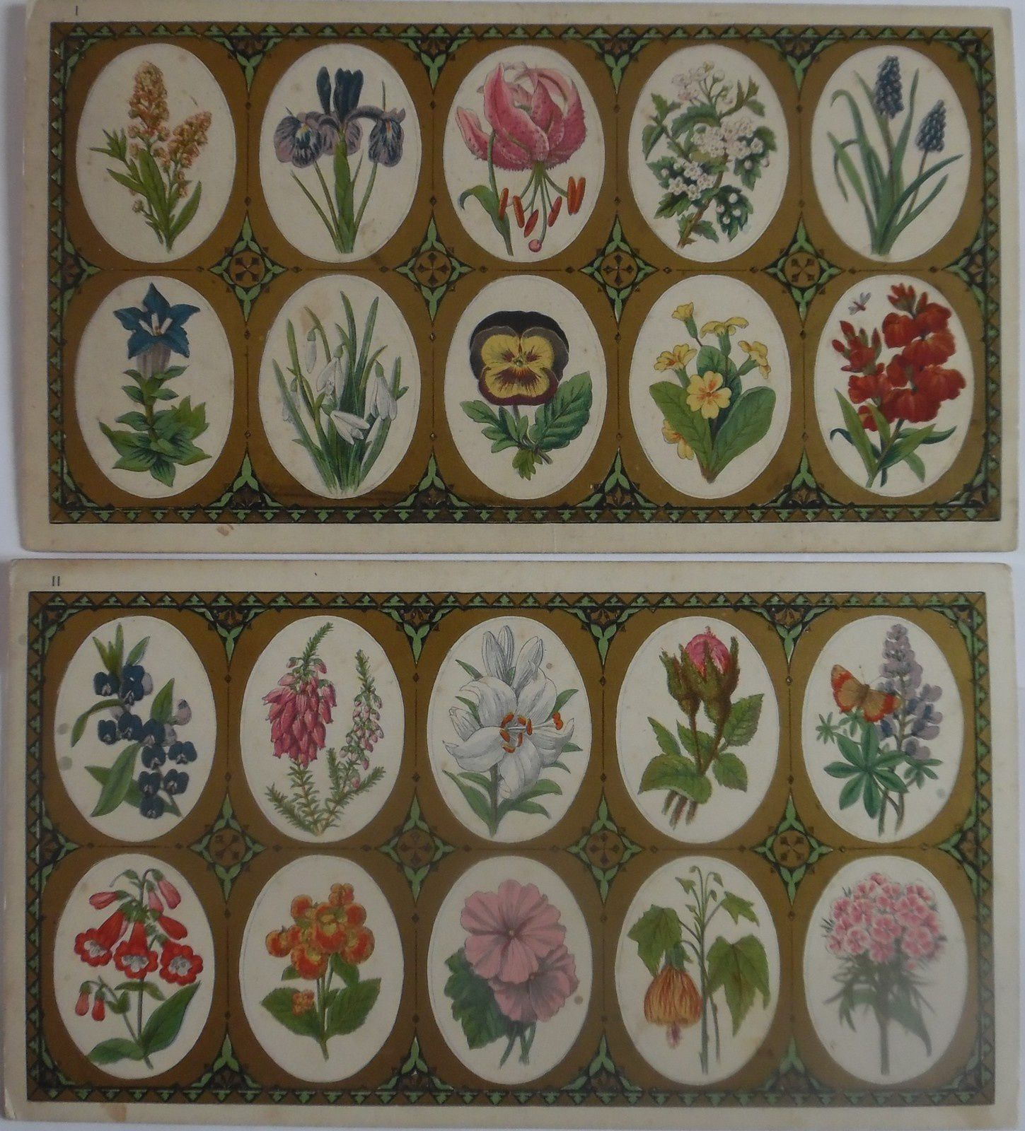 Floral loto, a new round game par Jacques&Son, London vers 1872