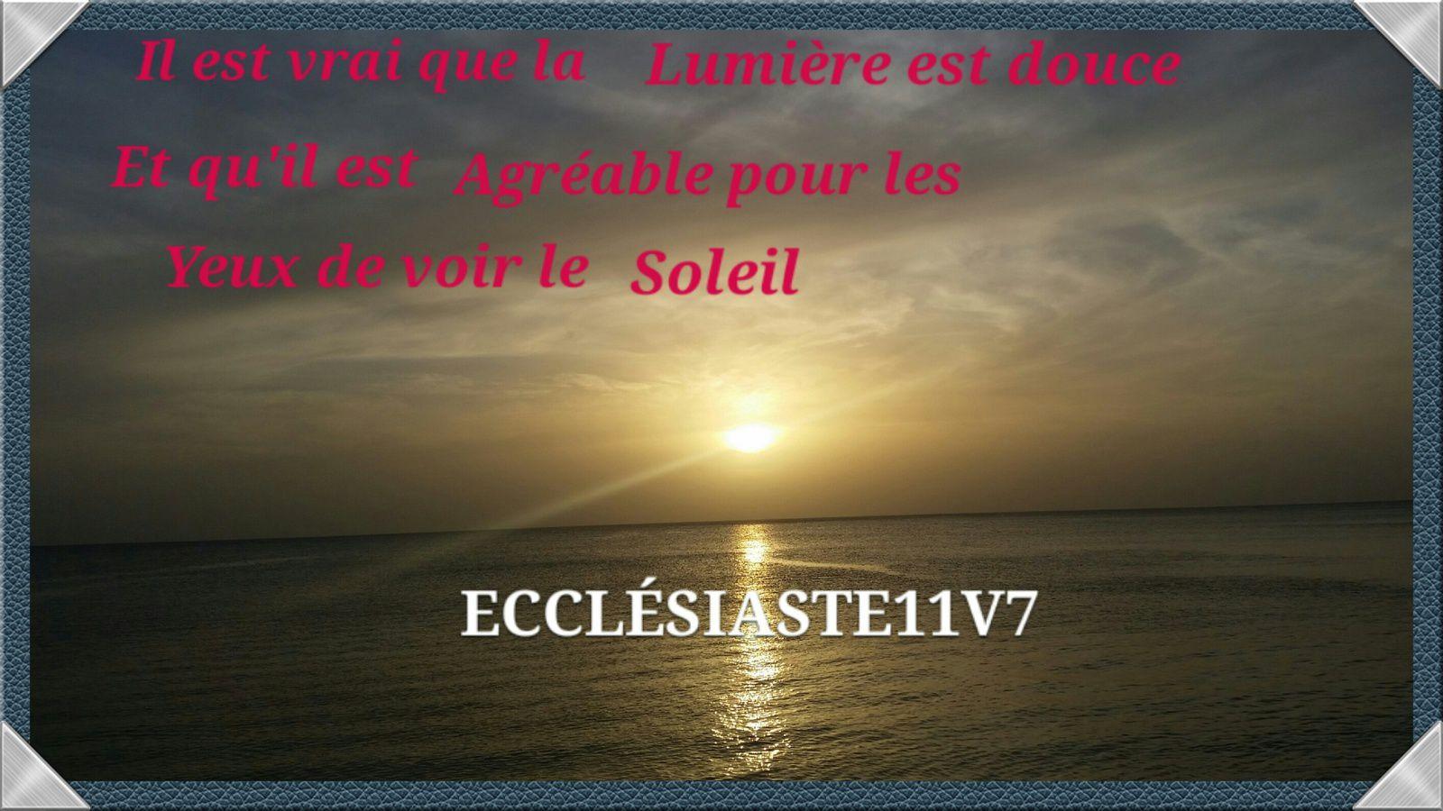 Bonjour Mes Frères Et Sœurs Ce Mardi De Saint Augustin Le