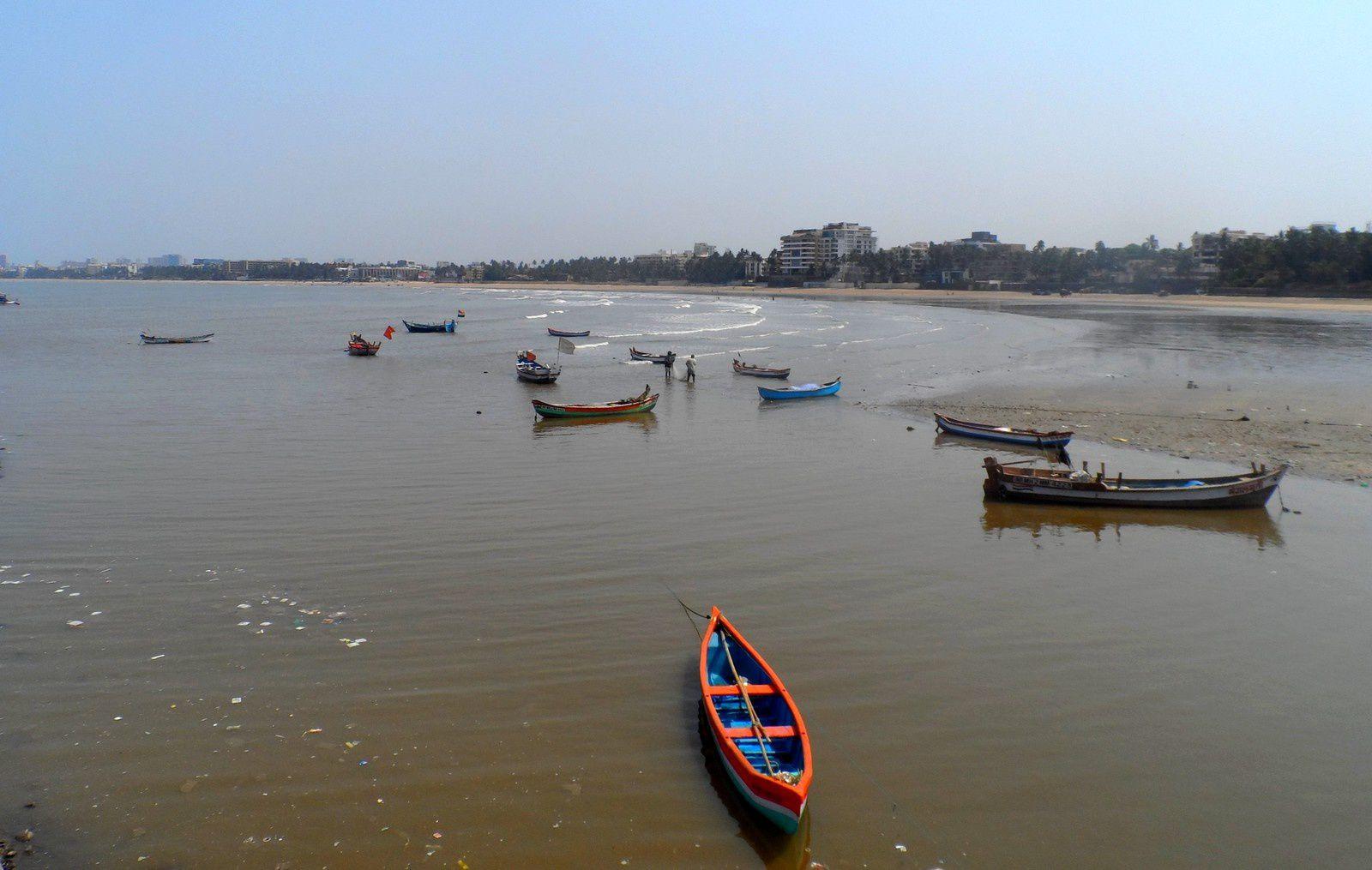 Bombay, c'est de la bombe bébé