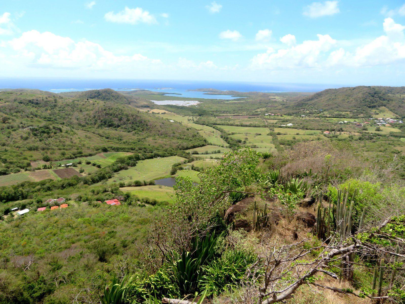 La Martinique en road trip (1/3): on dirait le Sud