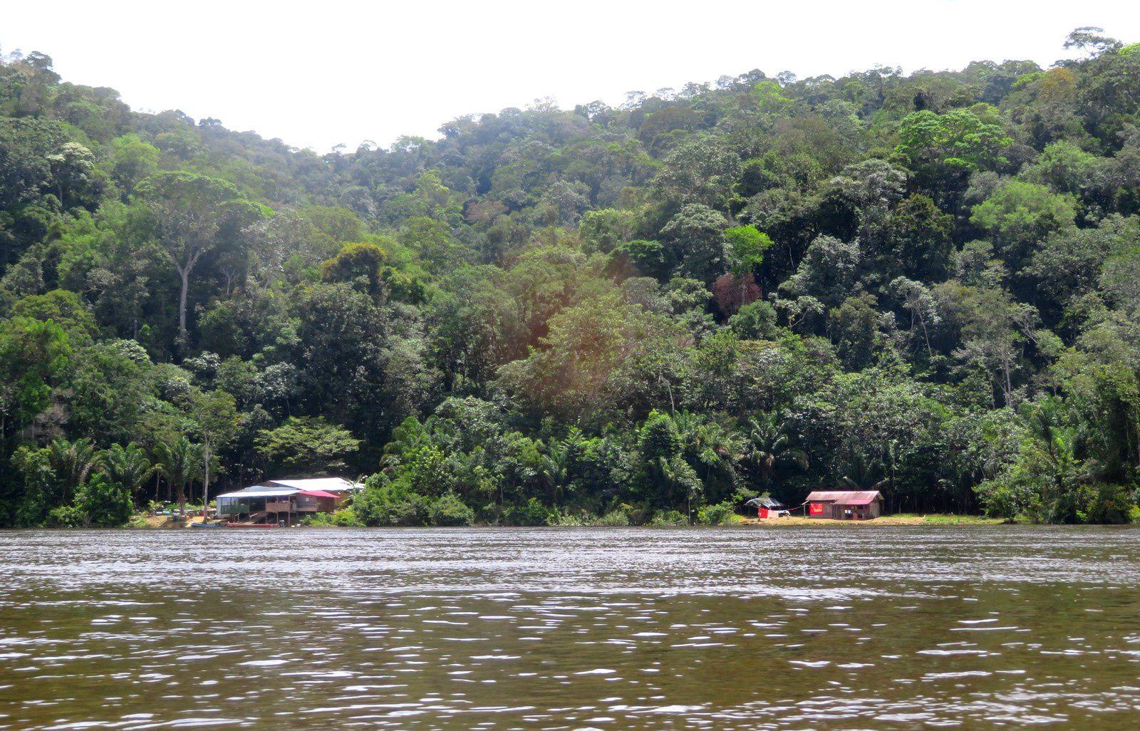 Maripasoula-Taluen: chez les Amérindiens Wayana