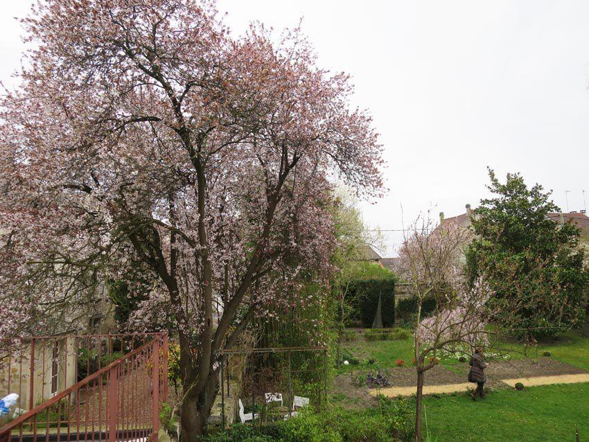 Aperçu du jardin de la maison-atelier Boggio. Ph. Delahaye.