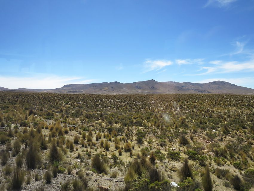 Au milieu de ce paysage désertique une petite marchande. Ph. Delahaye