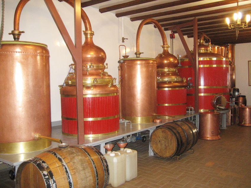 Les alambics de la distillerie Guy. Ph. Delahaye.