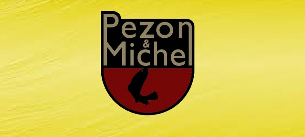 Catalogue Pezon&Michel 2018