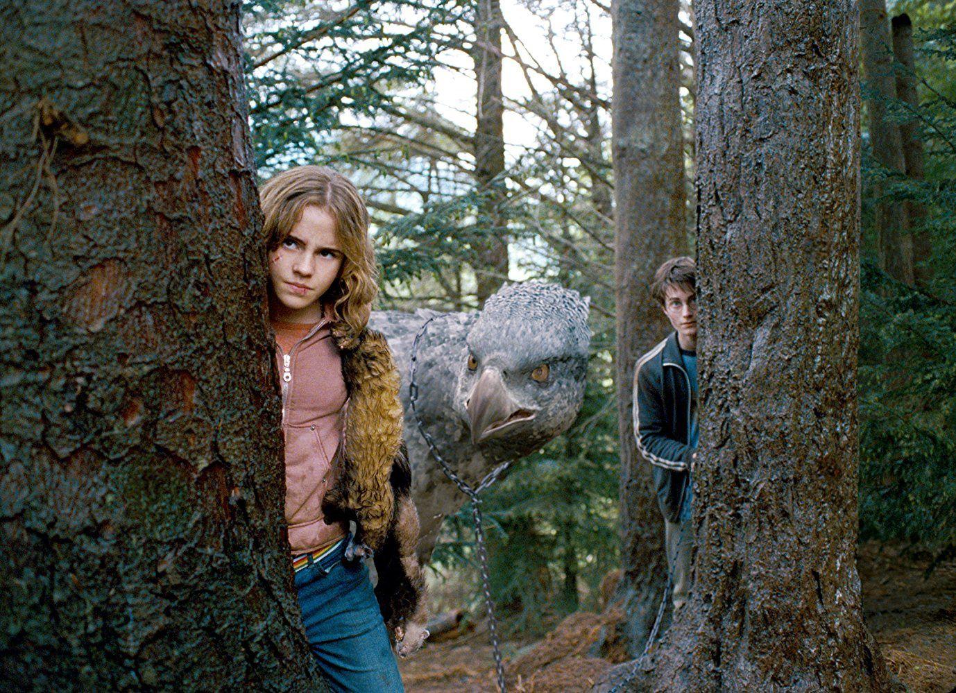 Harry Potter et le prisonnier d'Azkaban (2003) Alfonso Cuaron