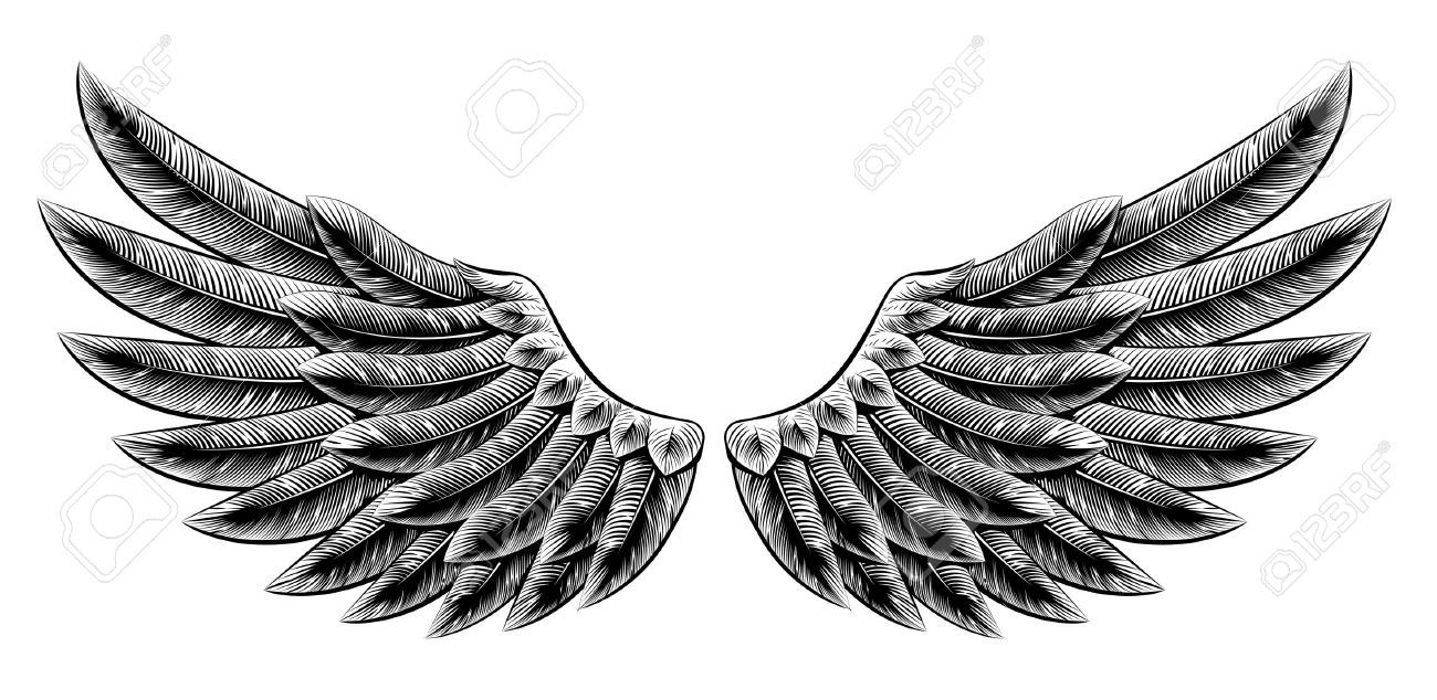Mes ailes d'anges