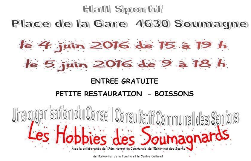 Exposition ce weekend du 4 et 5 juin à Soumagne