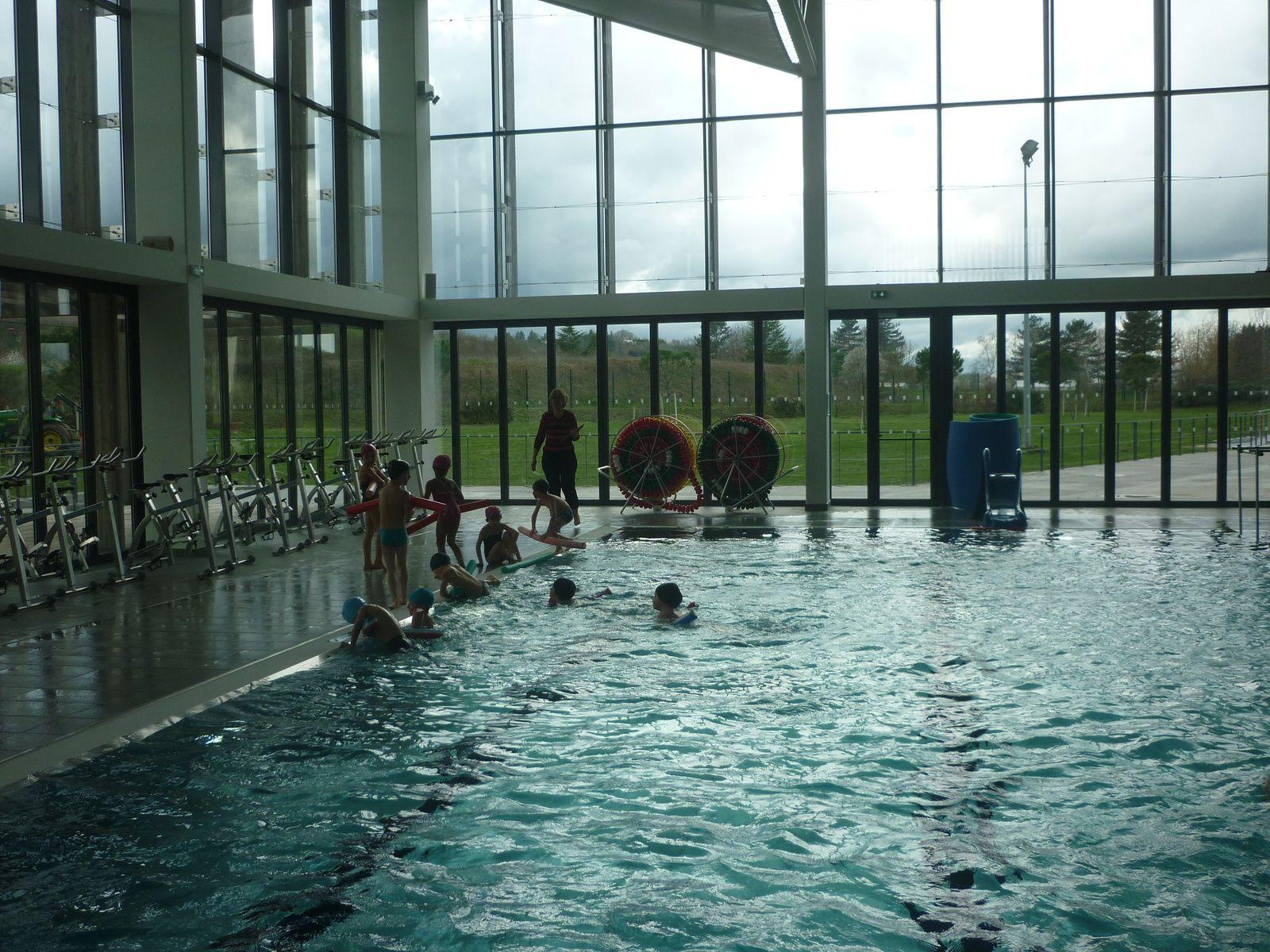 Le primaire de St Sylvestre pour un cycle natation !