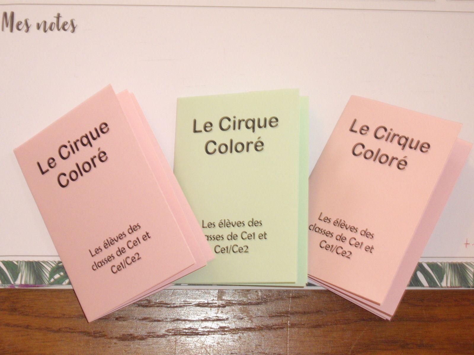 Classes des Ce1 et Ce1 / Ce2: Une petite rétrospective sur notre projet cirque...