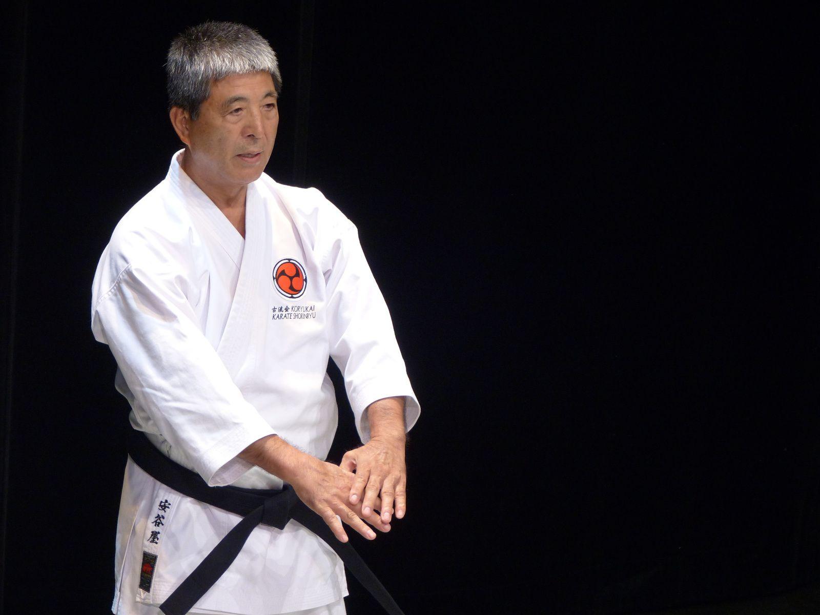 Seisuke Adaniya (Shorin Ryu Karate)