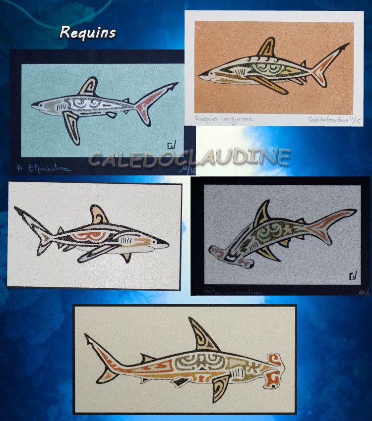 Requins à Elphinstone
