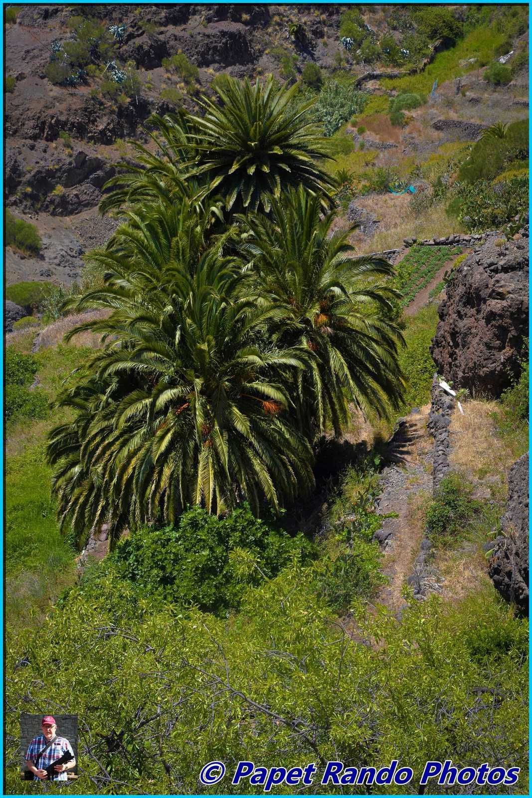 Masca, magnifique petit village de montagne en descendant du Teide a voir, le paradis du photographe & autres