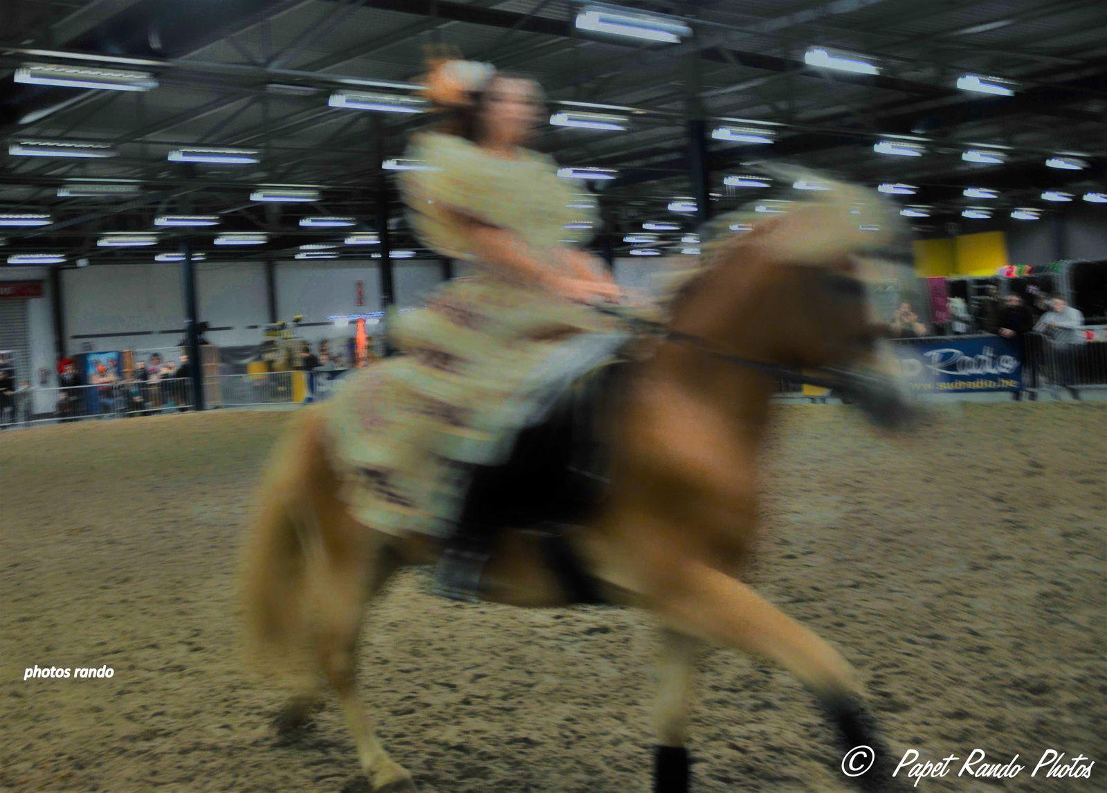 L'Espagne s'invite au Salon du  Cheval a Tournai