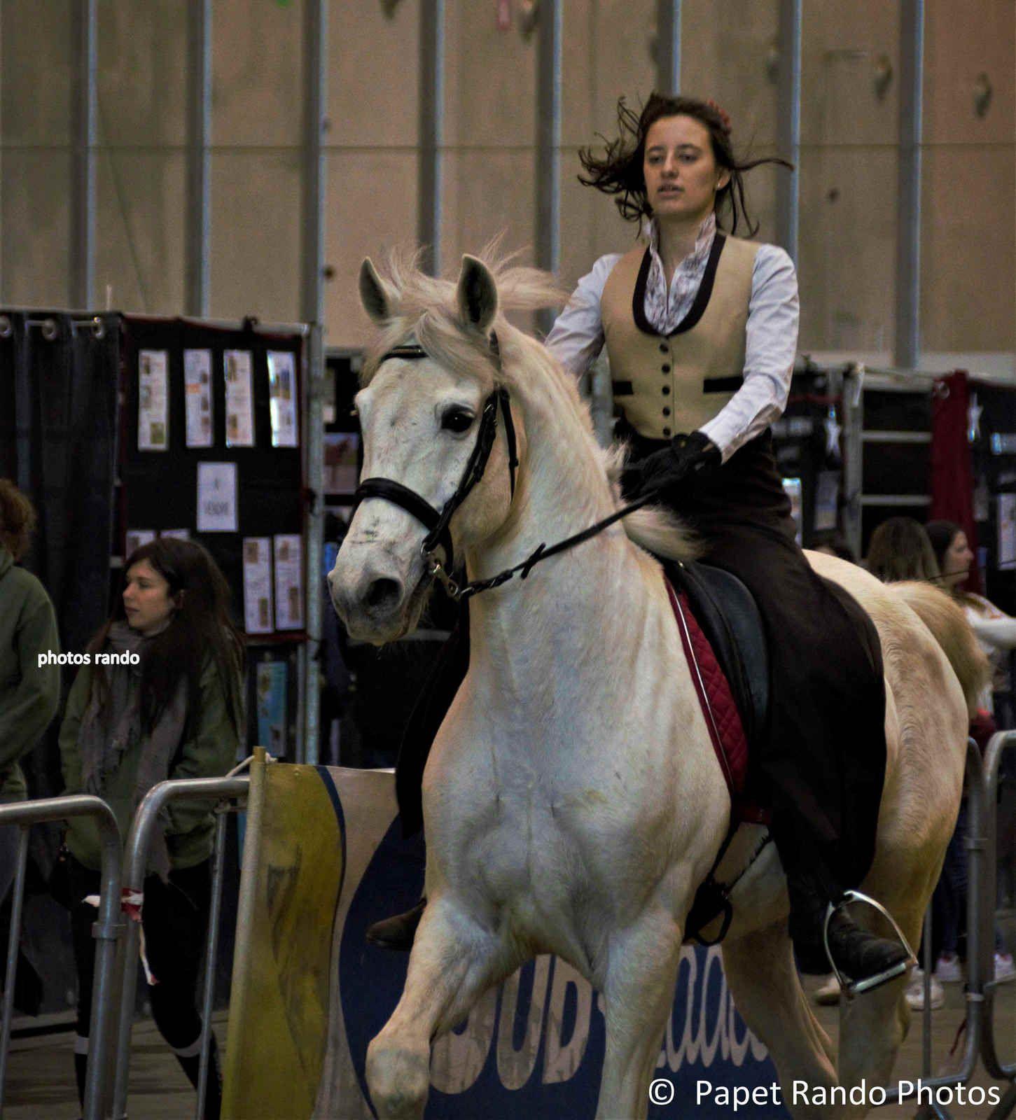 Le Salon du Cheval toujours un spectacle au TOP Bravo a toutes & tous a la prochaine